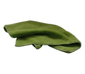 Mikrofázová utěrka oboustranná zelená Lemmen 97574GR 40x40