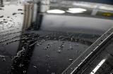 Sušič s nano konzervací Koch Hyper Dryer 10 l, fotografie 5/6